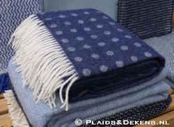 Plaid Spot blue