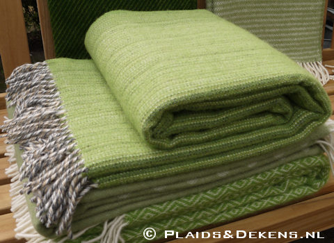 Plaid Bjork groen