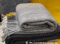 Plaid Gute grey yellow