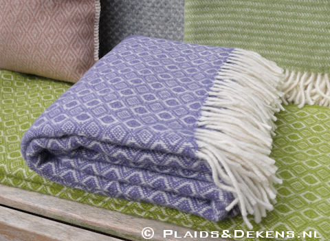 Plaid Havanna lavendel