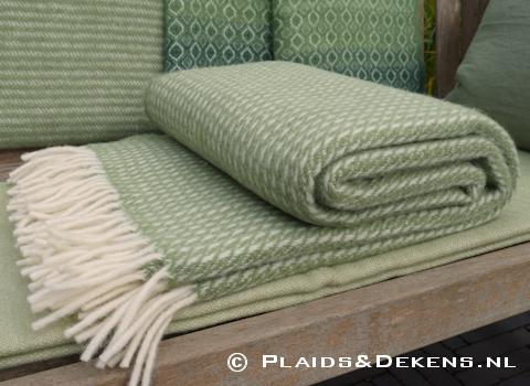 Plaid Line green