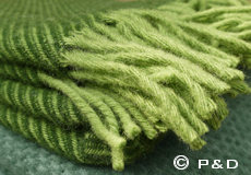 Plaid Linus groen franjes