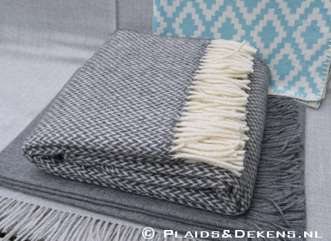 Plaid Pulse grey